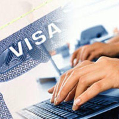 02. Choose the visa type